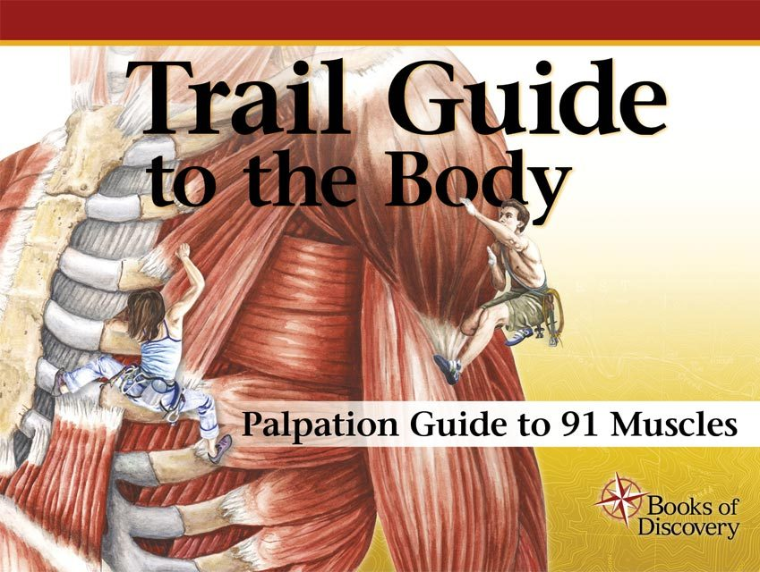 5th edition Trail Guide to the Body Instructor Palpation ...