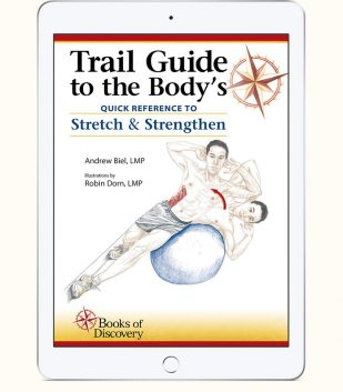 Trail guide to the body ebook and video 5th edition books of trail guide to the bodys quick reference to stretch and strengthen ebook fandeluxe Image collections