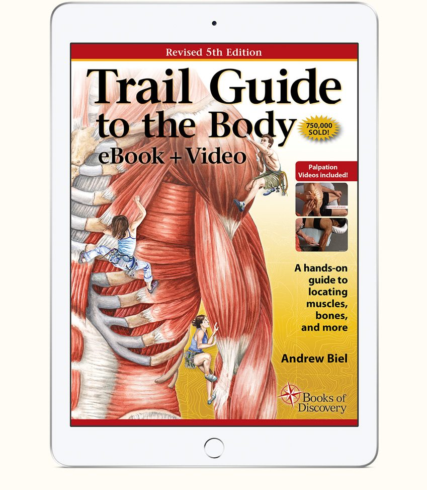 Trail Guide To The Body Ebook And Video 5th Edition Books Of